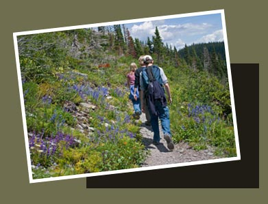 The Wilderness Time Capsule Adventure begins on this trail to remote areas.