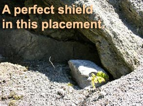 Perfect Shield for Rock