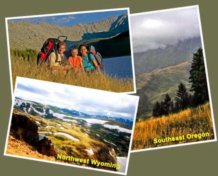Three Photos of Wilderness